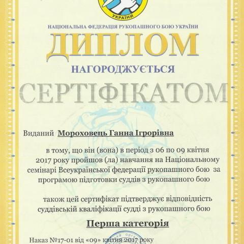 Категория судей Днепропетровской областной федерации рукопашного боя