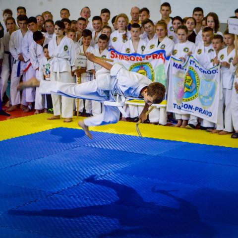 Чемпионат Украины по рукопашному бою среди детей, юношей и юниоров - май 2017г.
